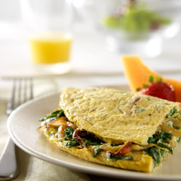 Caramelized Onion, Arugula and Parmesan Cheese Omelet Recipe